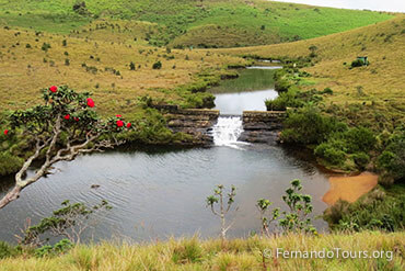 Places to see in Sri Lanka Horton Plains National Park