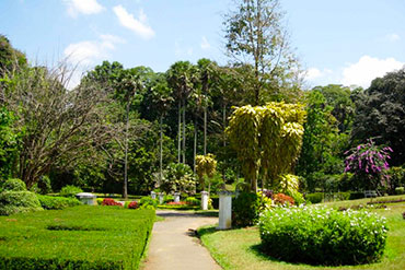 Places to see in Sri Lanka Kataragama Peradeniya Botanical Garden
