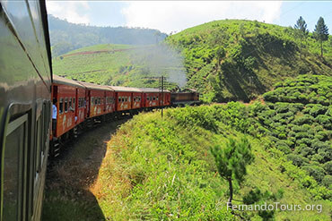Places to see in Sri Lanka Train Ride in the Mountains